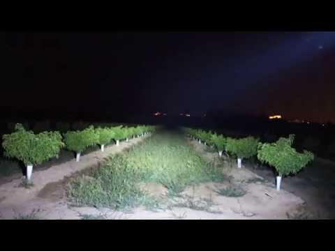 CREE XM-L T6 1-LED 3800LM 5 Modes Zoom LED Flashlight T ...