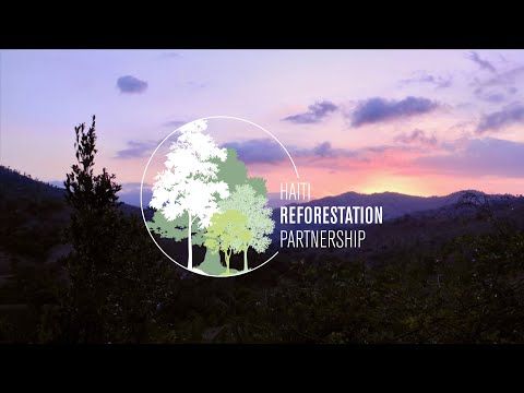 30 Years of Reforestation Success [2019]