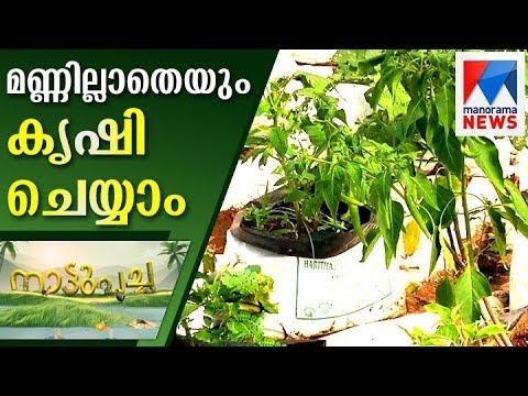 KVK soil-less medium proves a huge hit  | Manorama News