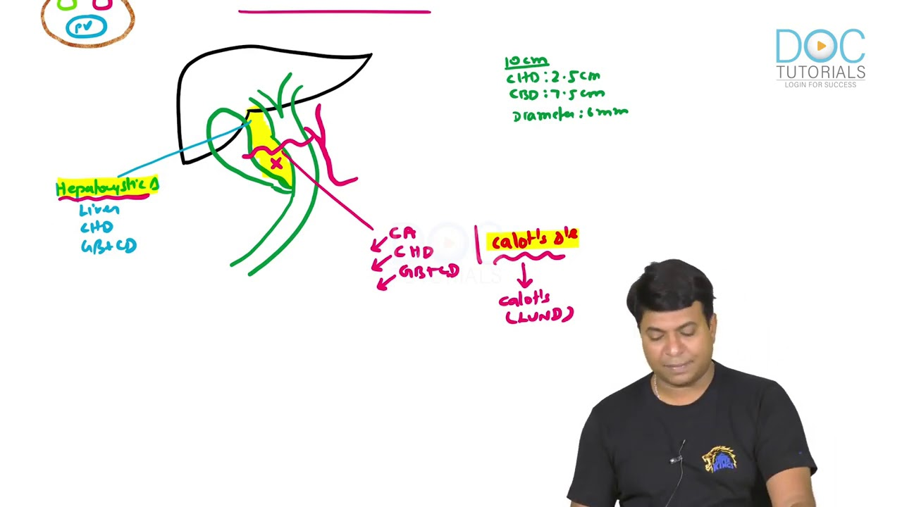 10 minute series- ERCP and related Anatomy
