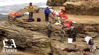 3 dead, 27 injured as boat crashes off San Diego coast