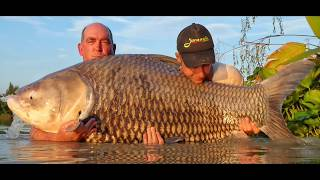 Fishing in Thailand @ Jurassic Mountain Resort and Fishing Park: Lands lands a giant Siamese carp