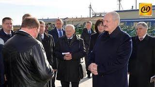 Александр Лукашенко: Не можете – уходите!