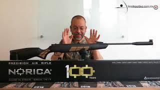 Revisión básica del rifle Norica Black Eagle cal. 5.5
