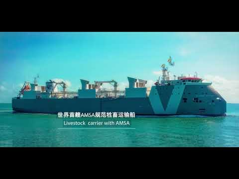 COSCO SHIPPING HEAVY INDUSTRY