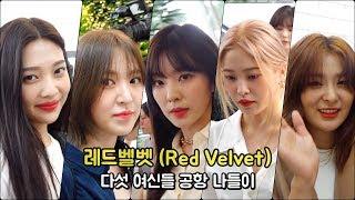 레드벨벳Red Velvet 다섯 여신들 공항 나들이 WD영상