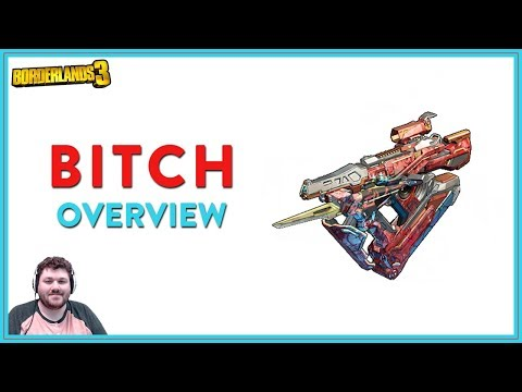 She Can Be A Boring _____ | Borderlands 3 | Bitch Legendary SMG
