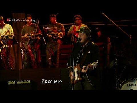 Zucchero | La Sesion Cubana 2013 | Live HD