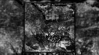 Eerie Aeon  - Pale Memory of Lost Days (Full Debut EP)