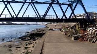 千鳥橋 北岸高架下 シーバス セイゴ 釣りポイント 天白川