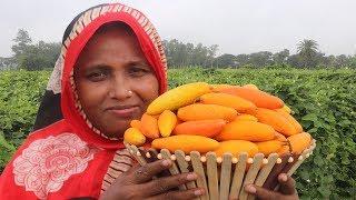 Delicious Bengali Potol Pora Vorta Recipe YUMMY FARM FRESH Pointed Gourd Paste Curry Village Food