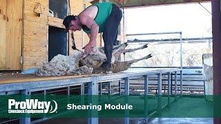 ProWay Shearing Module
