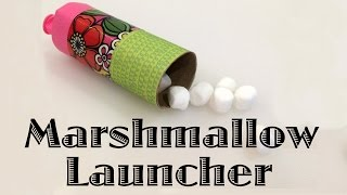 Paper Tube Marshmallow Launcher