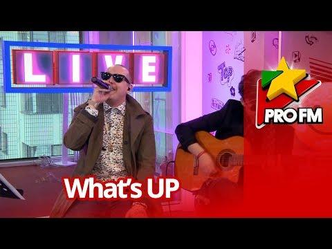 What's Up - Hana | PREMIERA ProFM LIVE Session