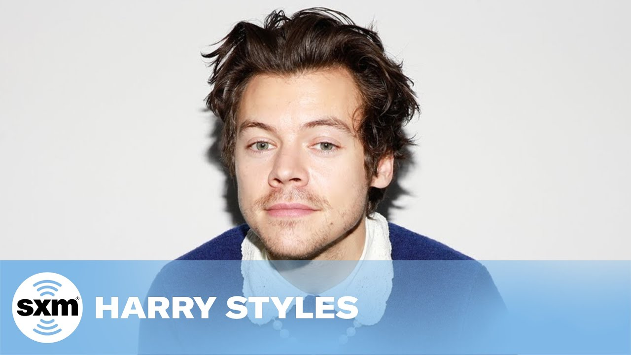 Would Harry Styles Reunite with One Direction on a Zoom Call? | Audio Only