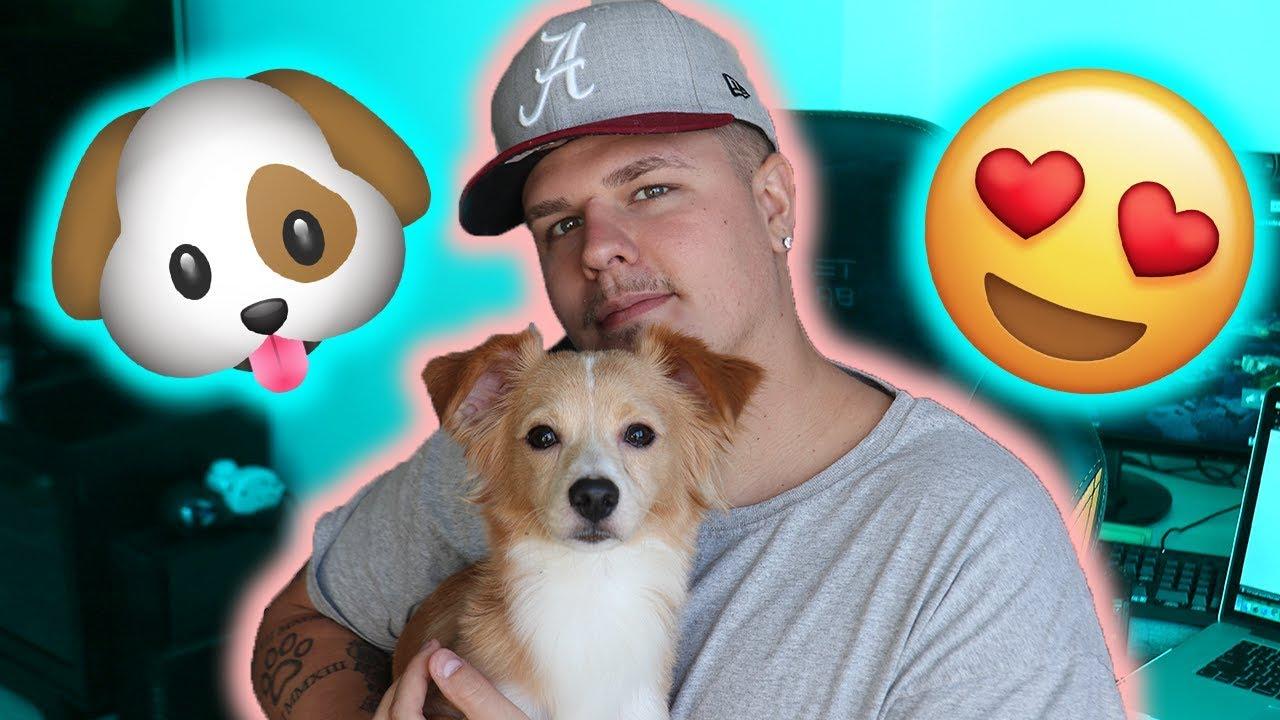 we-got-a-new-puppy