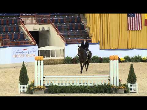 122 SOMEDAY   Lucien Rouse   Amateur Owner Hunter 3 3 Round 2