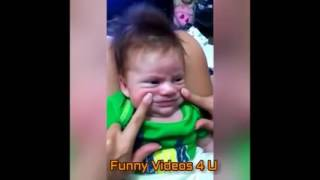 Most Funny Videos Ever Seen In The World