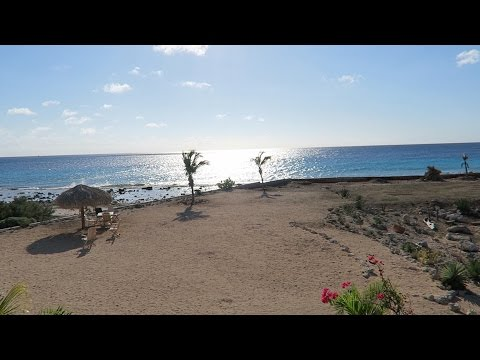 CARIBBEAN TRAVEL ADVENTURE! | Bonaire Day 1