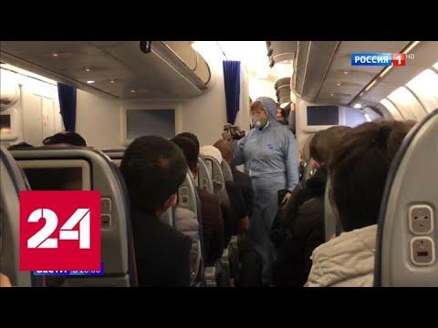 Санитарные ворота страны: как в Шереметьеве проверяют прилетевших - Россия 24