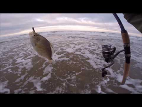 Fishing With A Cheap $10 Walmart Reel