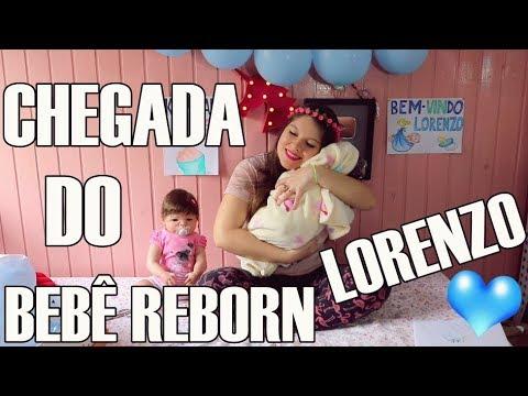 Chegada do Bebê Reborn Lorenzo