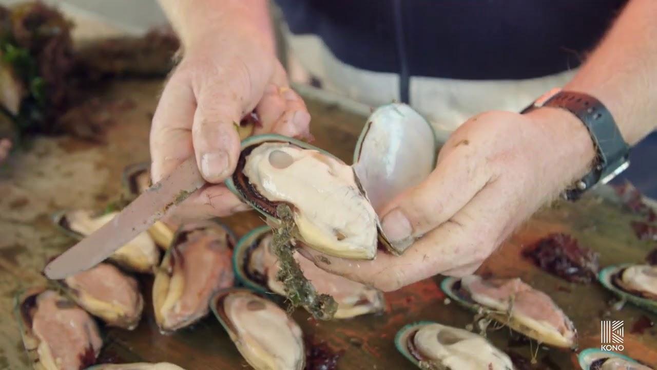 Kono Seafood Landing Page - YouTube