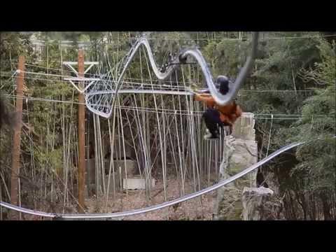 The Rollercoaster Zipline