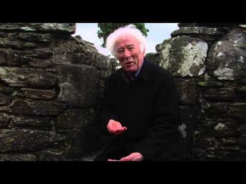 ST  KEVIN and THE BLACKBIRD