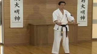 極真会館大石道場 大石代悟最高師範 型『臥竜』 kyokushin-ohishi