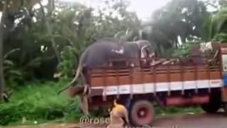 WAPWON COM Latest Indian Funny Videos Compilation 2015   Indian Whatsapp Videos   Videos De Risa 201