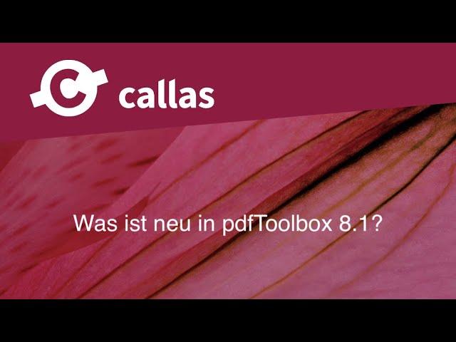 Team Slot Katalog Jahr Pre 2010 Neu 14 Seiten Kinderrennbahnen Elektrisches Spielzeug