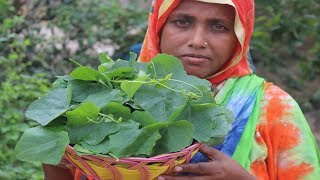 Farm Fresh Healthy Ivy Gourd Recipe Awesome Spicy Cooking Tela Kachu Patar Pitha Curry Village Food