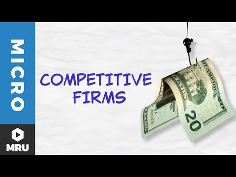 Introduction to the Competitive Firm