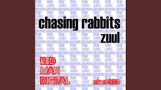 Chasing Rabbits (The PIX Remix)
