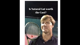 Is Natural Gut Tennis String worth the cost?