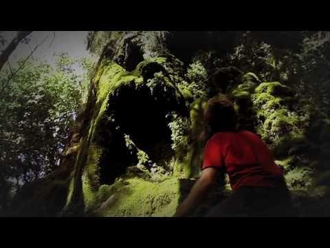TRAIN TO ROOTS_IL PIU' BEL SOGNO_By Illador Films.mov