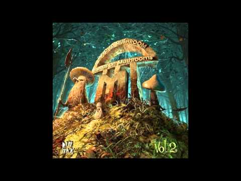 Infected Mushroom - Trance Party [HQ Audio]