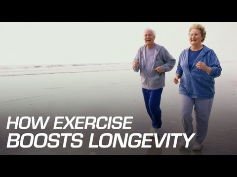 How Exercise Boosts Longevity
