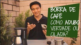 Borra de Café como Adubo – É Bom ou é Cilada?