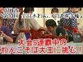 第33回 全日本わんこそば選手権 早食い 大食い 岩手県 盛岡