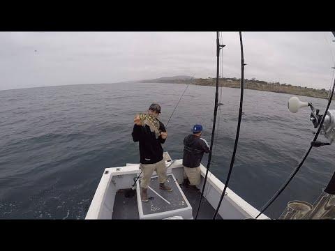 Local Bass Fishing San Pedro CA 2019