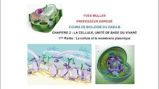 Chapitre 2 – 1ère Partie : La cellule et la membrane plasmique - Cours de Biologie du DAEU-B