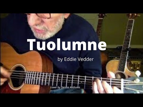 Tuolumne (Eddie Vedder cover) played by Dennis Anthonis