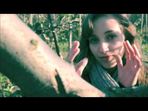 Клип gold panda - Quitters Raga