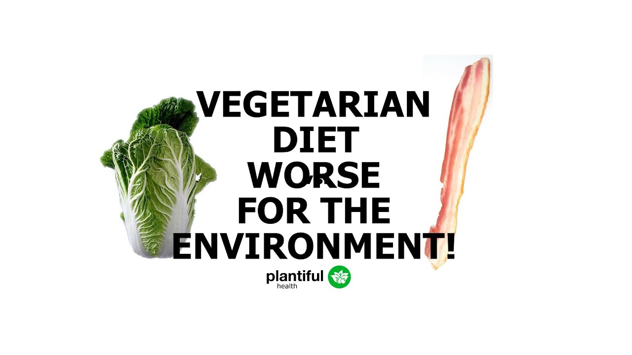 eating meat environment essay Free essay: eating meat eating  eating meat is also responsible for the mass destruction of the environment  vegetarianism and meat eating in food culture essay.