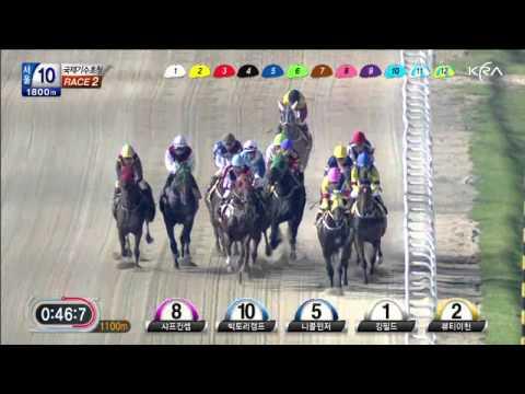 Seoul International Jockey Challenge 2012 - Race 2