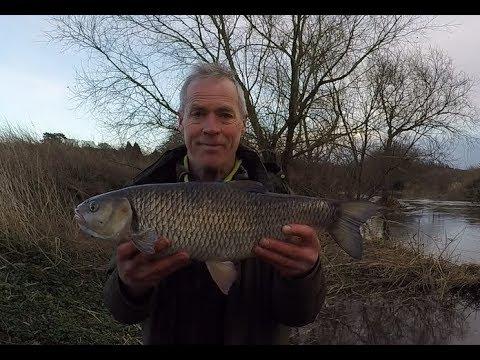 Winter Chub Fishing River Ouse 2019 Patric Kyte