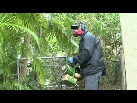 Did Zika reach Miami Beach?