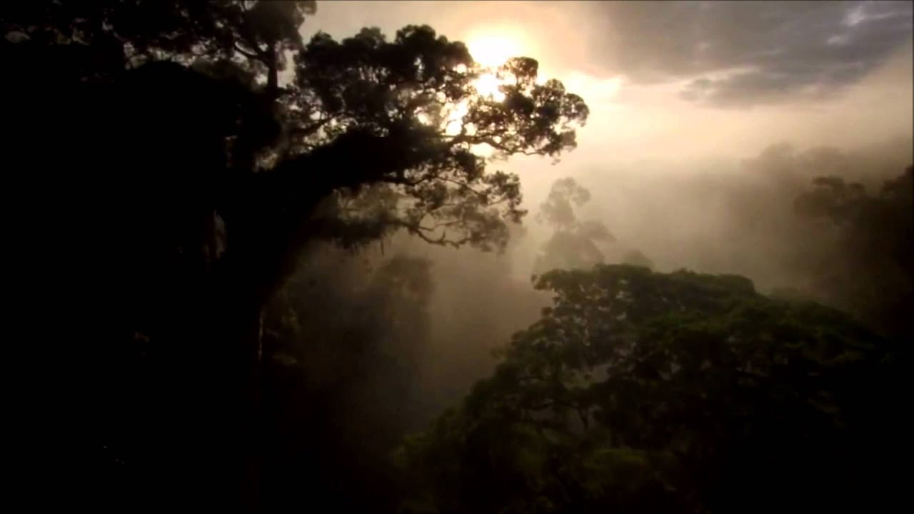 Tiësto - Ten Seconds Before Sunrise #1